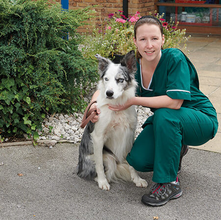 Jenny Sutton | Aireworth Vets