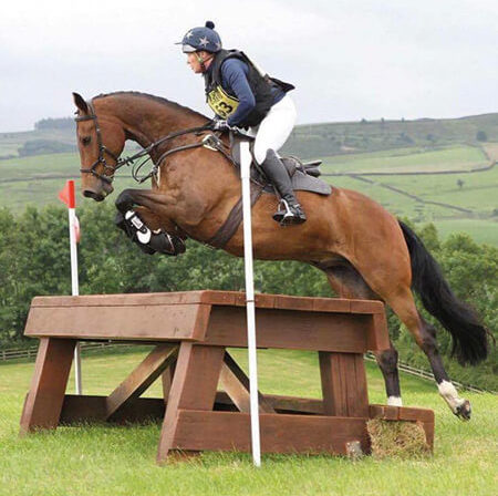 Jo Butterell | Aireworth Vets