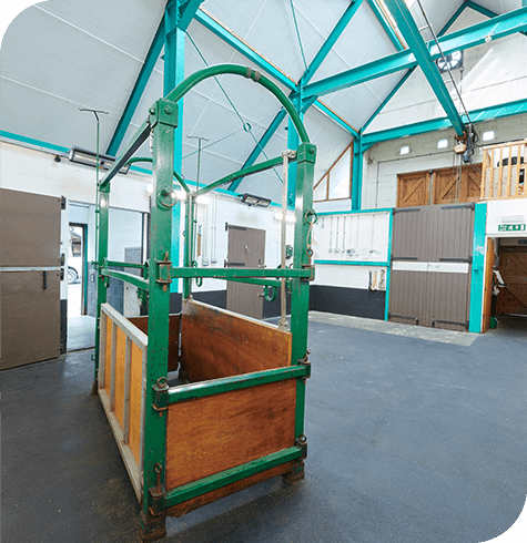 Facilities | Equine Services | Aireworth Vets