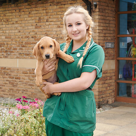 Vicky Lewis | Aireworth Vets